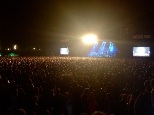 A view onto the crowd at the festival